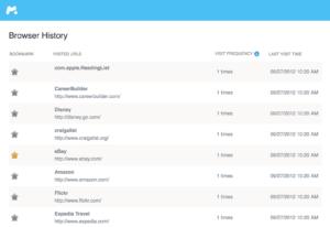 browser Überwachung mSpy